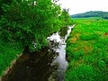 Halfway Prairie Creek - panoramio.jpg