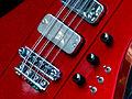 Hamer Thunderbird 8 string bass details.jpg