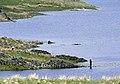 Haweswater - panoramio.jpg