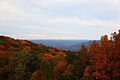 High-mountain-view-fall-foliage - West Virginia - ForestWander.jpg