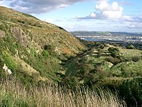 Hillside - geograph.org.uk - 70219.jpg