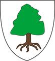 Historical Burzenland Maierus CoA.png