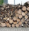Holz hinter der Hütte - panoramio.jpg