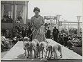 Hondenshow op het terras van hotel Bouwes. NL-HlmNHA 54005268.JPG