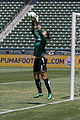 Hope Solo save 2009.jpg