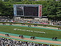 Horse racing @ Tokyo Race Course @ Fuchu (14117617321).jpg