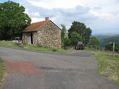 House-IMG 6913.JPG