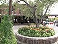 Howard Street corner garden.JPG