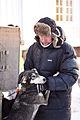 Hundekos før start (8435362137).jpg