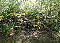 Huvududdens naturreservat, röse RAÄ-nummer Ekerö 11-1.jpg
