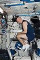 ISS 37 European Space Agency astronaut Luca Parmitano.jpg