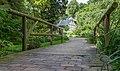 Im alten botanischen Garten in Kiel msu2017-9048.jpg