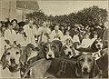 In Vanity Fair; a tale of frocks and femininity (1906) (14742836936).jpg