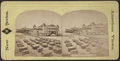 Iron Pier, Coney Island, from Robert N. Dennis collection of stereoscopic views 7.png
