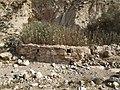 Israel Hiking Map מאגורת רחמים 1.jpeg