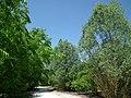 Jardins du Monde (Royan) - panoramio (1).jpg
