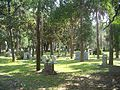 Jax FL Evergreen Cem01.jpg