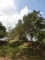 Jayanthipura, Polonnaruwa, Sri Lanka - panoramio (13).jpg