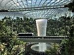 Jewel Changi Airport Rain Vortex 1.jpg
