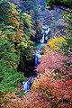 Jinja-falls-ojirogawa (200811).jpg