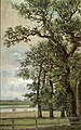 Johan Christian Dahl - Oak Trees by the Elbe - NG.M.01991 - National Museum of Art, Architecture and Design.jpg