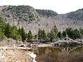 Jordan Pond Trail Bridge and the North Bubble - panoramio.jpg