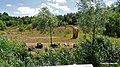 Jura Park Krasiejów - Widok z terenu parku - panoramio - Kazimierz Mendlik (103).jpg