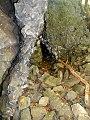 Köves-hegyi-barlang.jpg