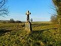 Kříž Františka Dočekala v Kameničce (Q104975715) 01.jpg