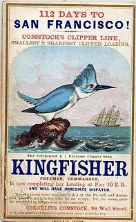 <i>Kingfisher</i> (clipper)