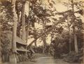 KITLV - 89902 - Beato, Felice - House on the Tōkaidō road in Japan - presumably 1863-1865.tif