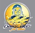 KSAvia-BalticBees Nakleika 060212.jpg