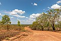 Kakadu National Park (AU), Marrakai Road -- 2019 -- 3765.jpg