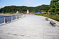 Kanegasaki ryokuchi01s3872.jpg