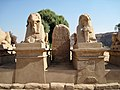 Karnak Tempel Dromos 11.JPG