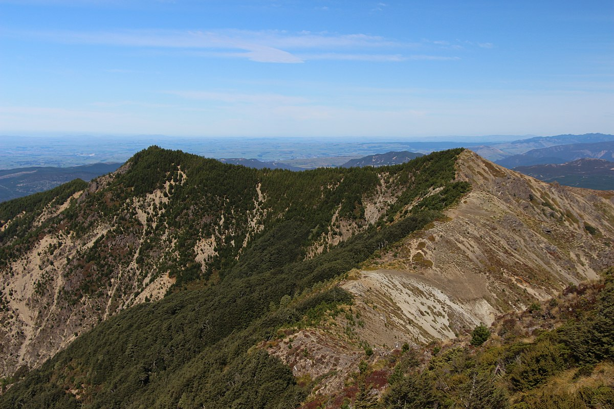 New Zealand Wikipedia: Forest Parks Of New Zealand