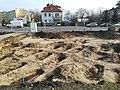 Kosynierów Park in Poznań 2020 old evangelical cemetery 01.jpg