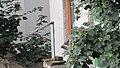 Krovovi mojih komšija - panoramio.jpg