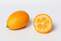 Kumquat geschlossen offen.jpg