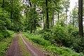 Lügde - 2015-05-29 - LIP-030 (01).jpg