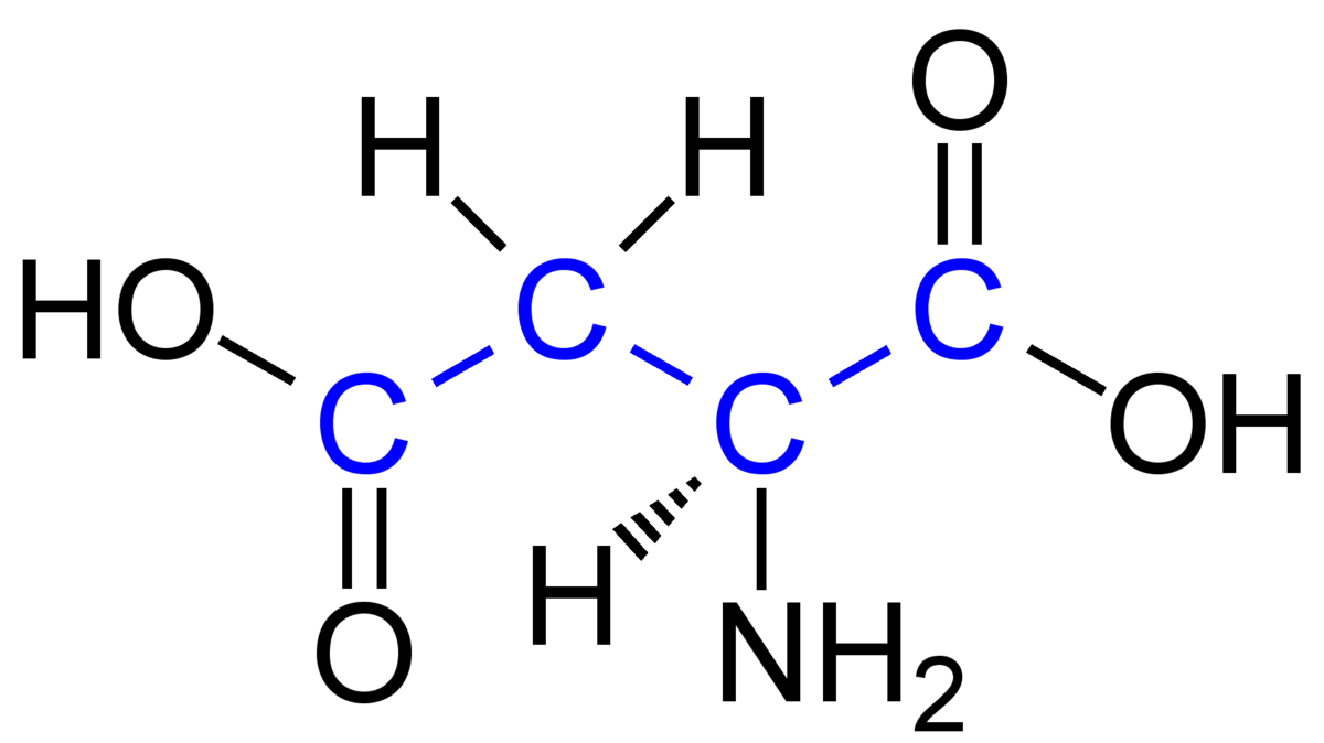 C4-Pflanze – Wikipedia