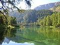 Lac de Palpuogna Grisons Suisse.JPG