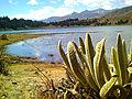 Laguna Mucubají Mérida Venezuela.jpg