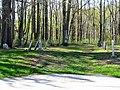 Lake Road Cemetery - panoramio.jpg