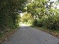 Lane To Swineyard Hall - geograph.org.uk - 1522495.jpg