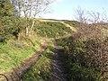 Lane at Gortinlieve - geograph.org.uk - 1030685.jpg