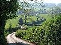 Lane to Haldon Grange - geograph.org.uk - 798338.jpg