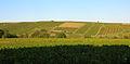 Lantignié abcd13 vignobles.jpg