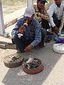 Lascar Snake Charmer (4499194699).jpg