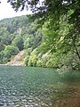 Le Lac des Bers (Sternsee) - panoramio.jpg